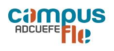 Logo Camplu fle